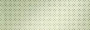 Cupido Amore Gemma Inserto 30.5x91.5 RT